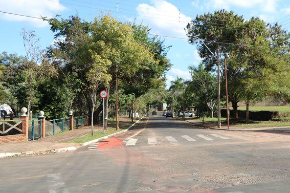 Secretaria de Meio Ambiente realiza Poda Árvores da Avenida Marginal